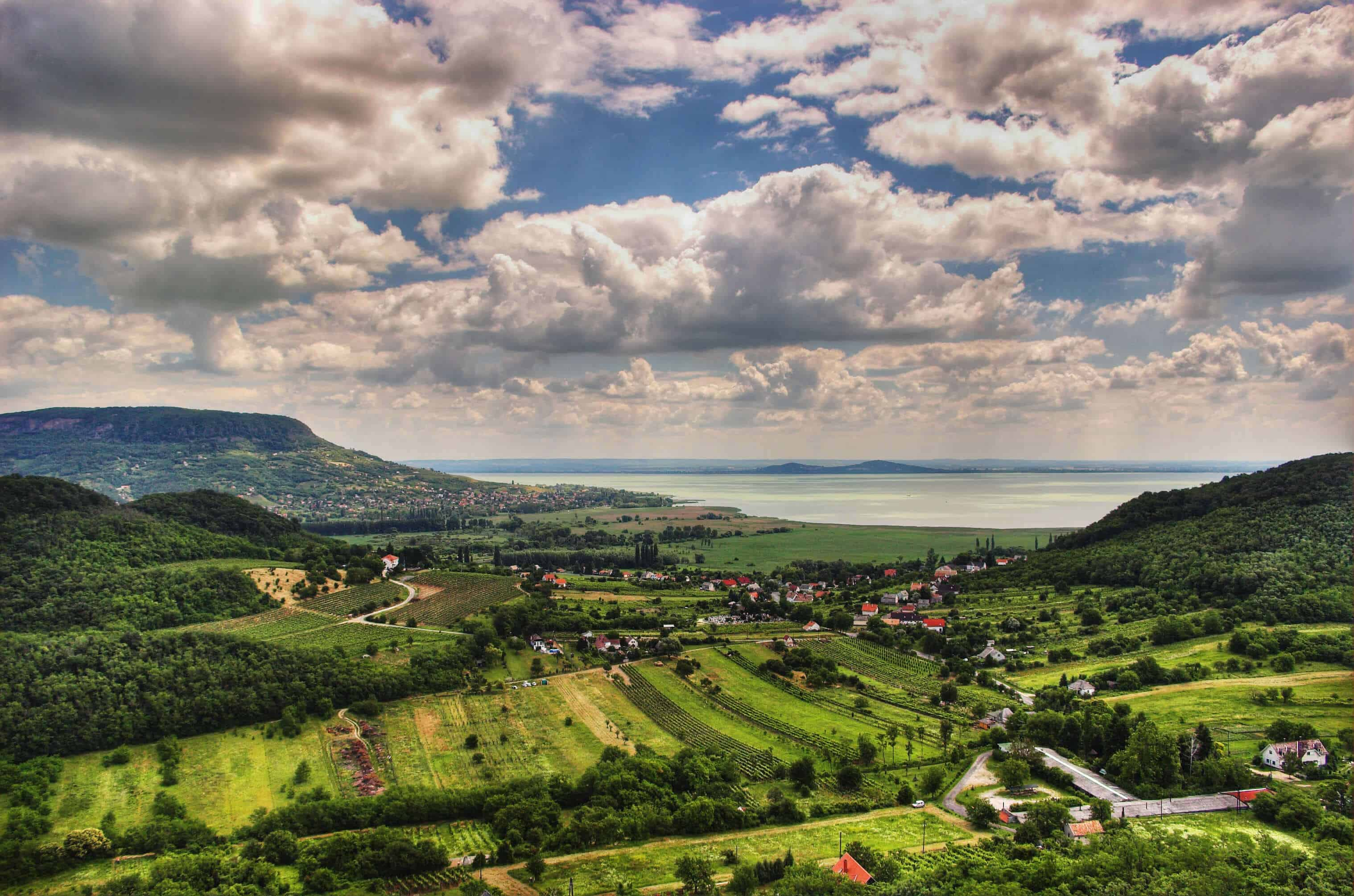 Hungary as a wine country – 10 interesting facts