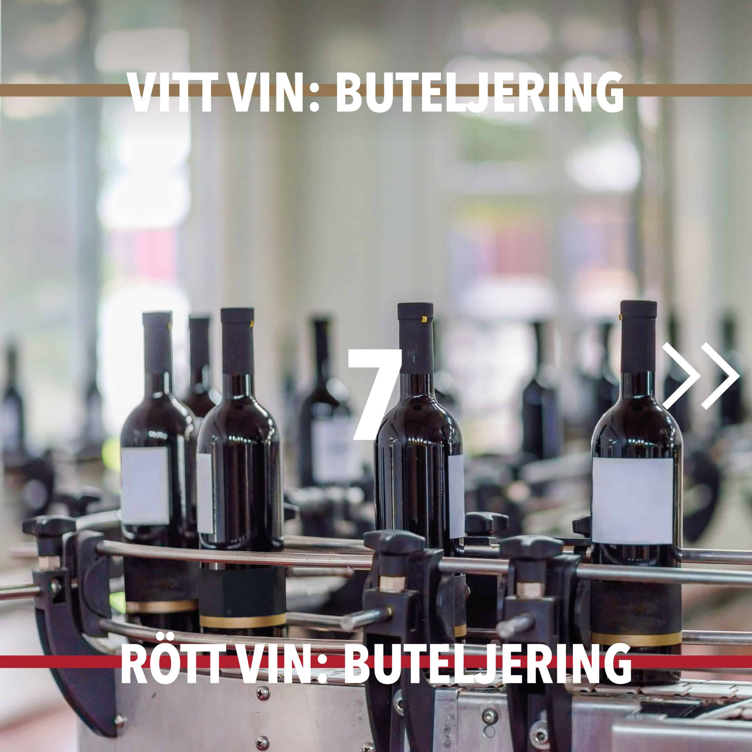 Vintillverkning guide hungry wines: Buteljering