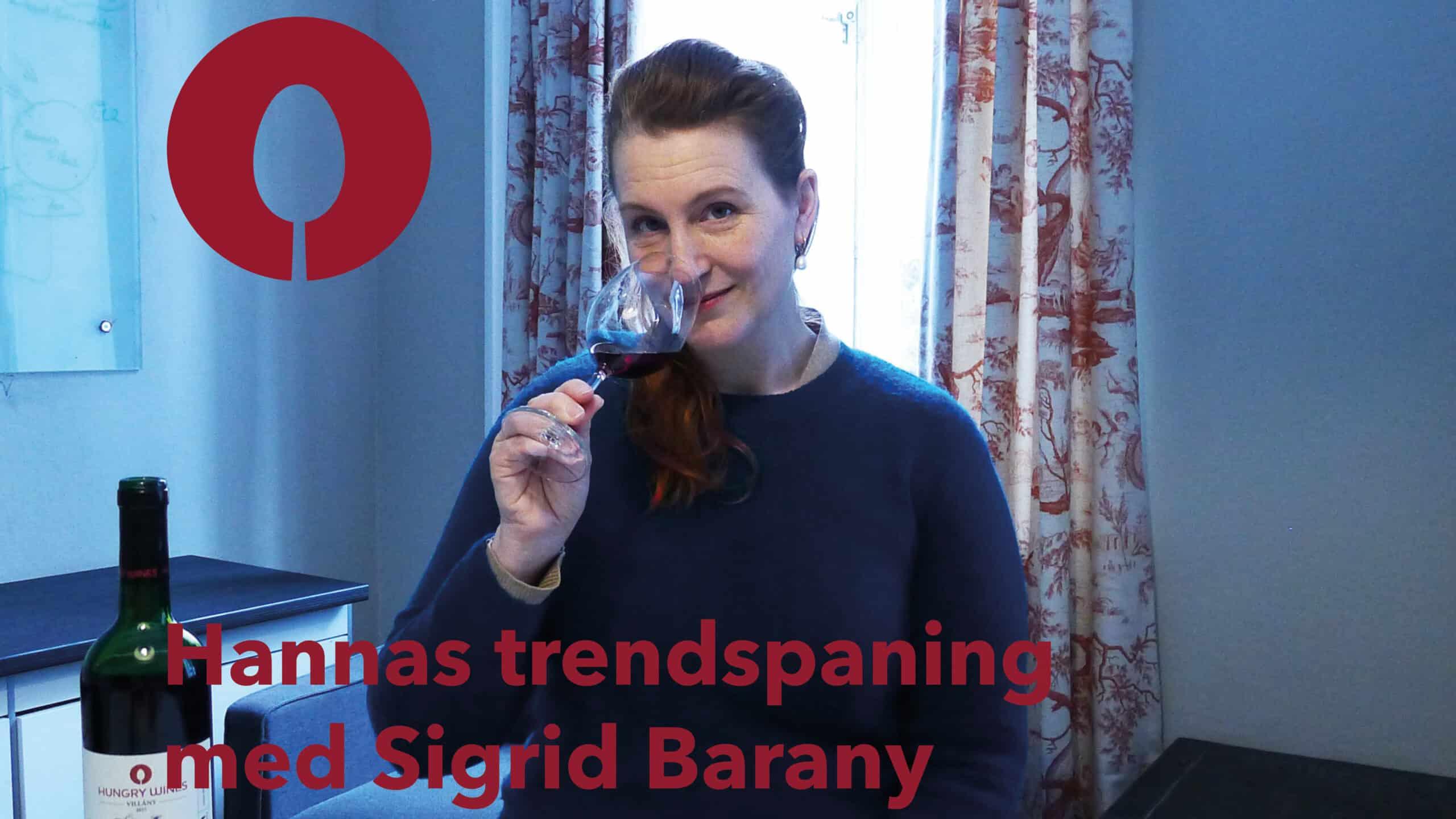 Sigrid Bárány i Hannas trendspaning