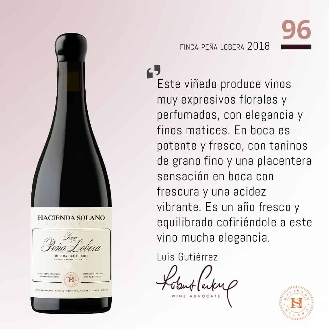 Toppbetyg för Hacienda Solanos viner 2018 – vi lanserar i vår!